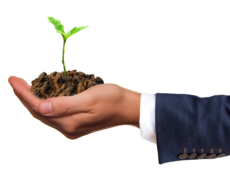 man's hand holding a heap of soil with a plant growing out of it